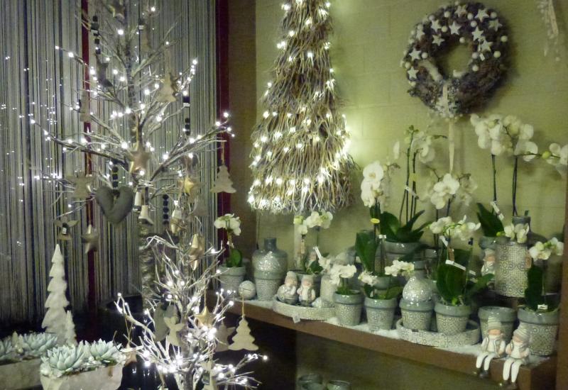 Planten decoratie bloemen cocquyt - Decoratie van een gang ...